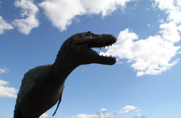 Live at the Dino Museum … JUNE 9 at 9am