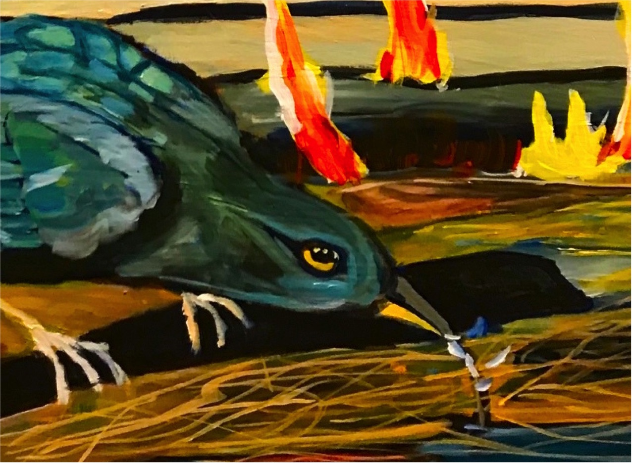 The Play's The Thing: Fire Bird